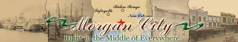 Welcome to the City of Morgan City Website